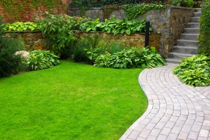 Lawn and Stone Pathway