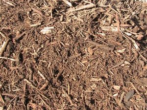 product_forest_mulch
